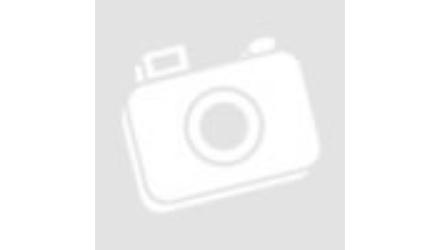 Cseh Sör Napja a Sörpontban!